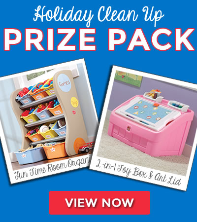 Holiday Toy Clean Up Prize Pack